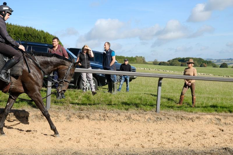 Owners on the Gallop