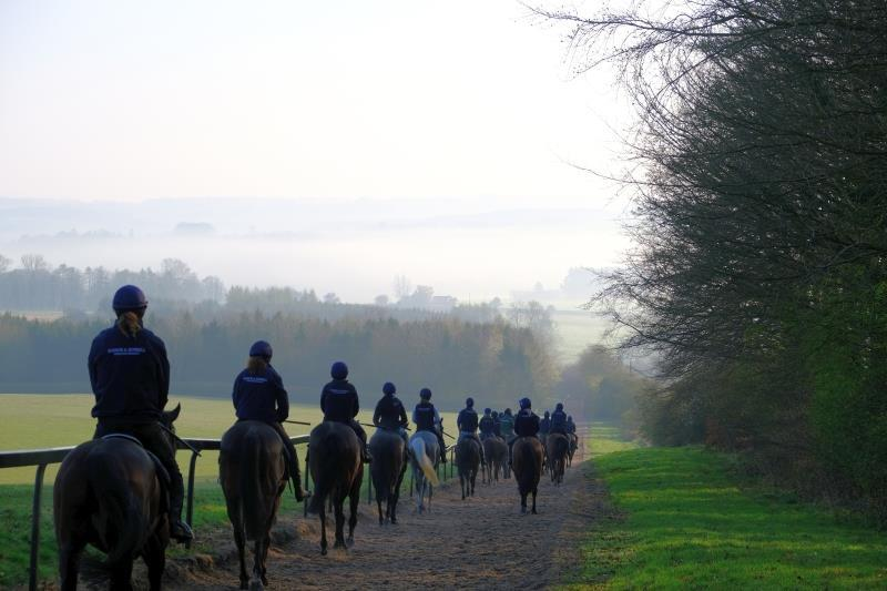 Walking down gallops