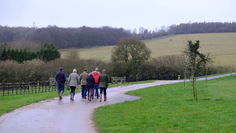 Setting sail to walk to the top of the gallops