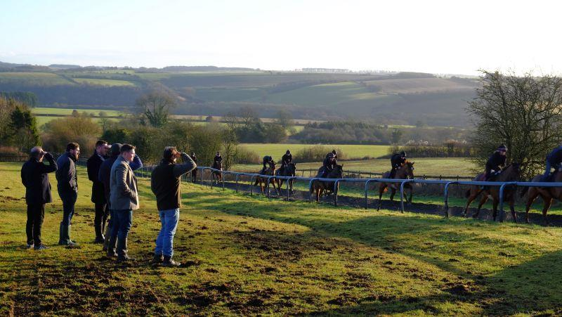 Heading up the gallops to watch the horses
