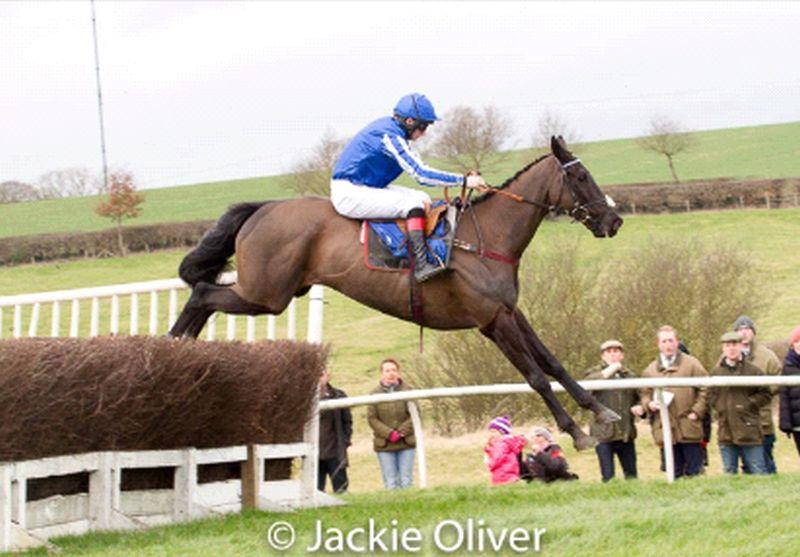 Henry Morshead jumps the last well clear on Mary Vesteys horse Silver Roque