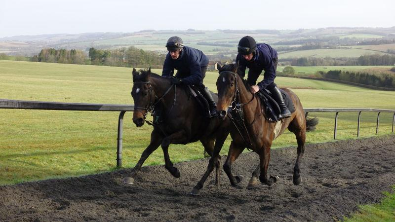 Minella Warrior and Ben Arthur