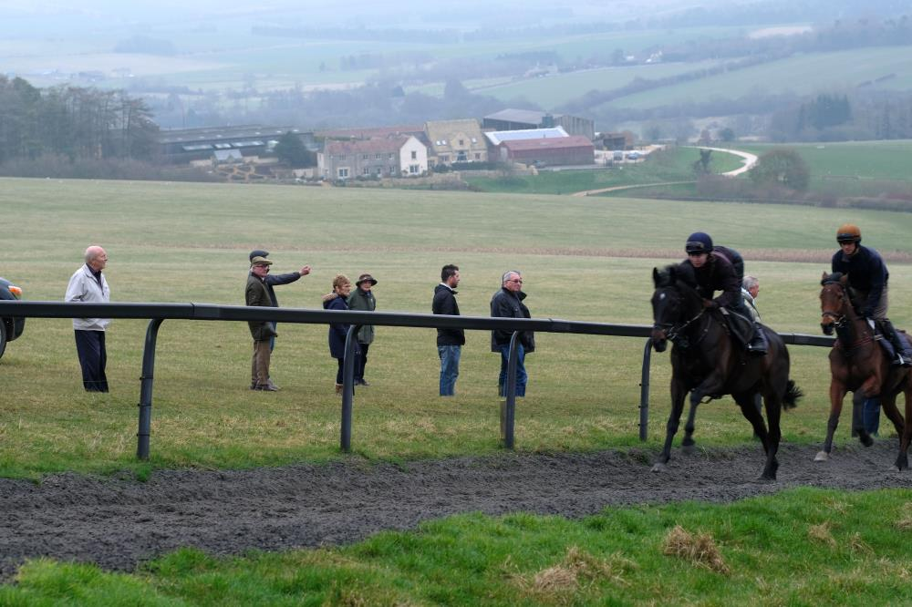 Owners and CD Tours team watching the gallops