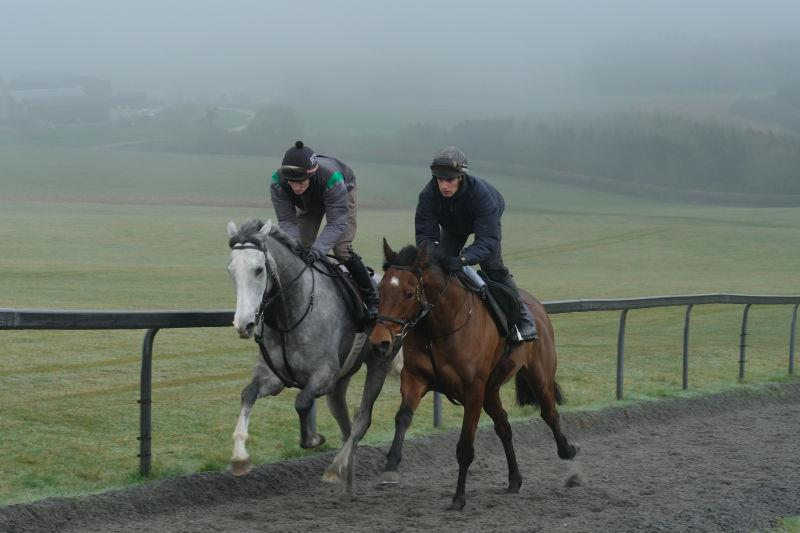 Silver Kayf and Cresswell Legend