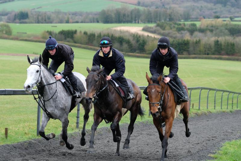 Kayf Storm and The Midnight Legend fillies out Pulling Strings and Even Flo