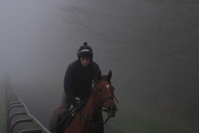 The Last Samuri appears out of the fog first lot this morning