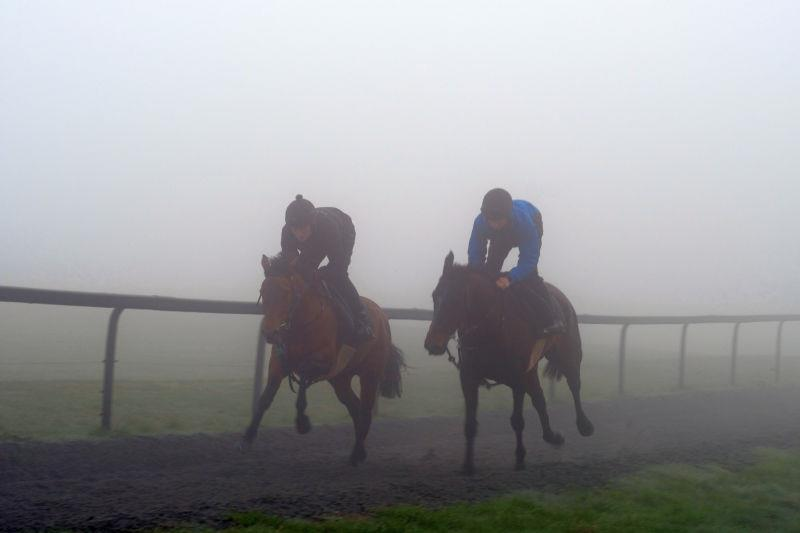 Monrocco and Milan Express working first lot in the fog..