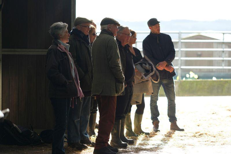 This mornings team from CD Tours watching a horse being scoped
