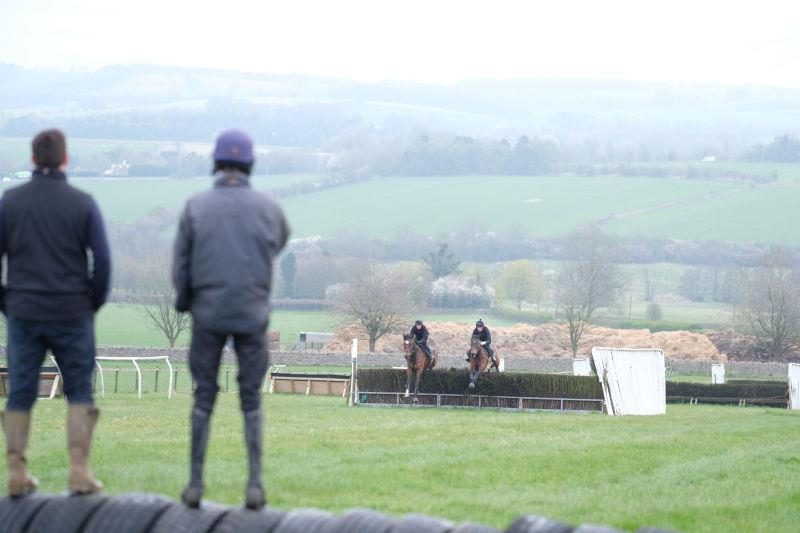 Mat and Ed Cookson watching the schooling