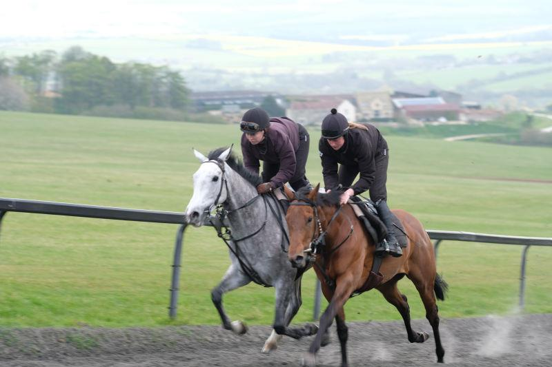 Kayf Storm and Monrocco