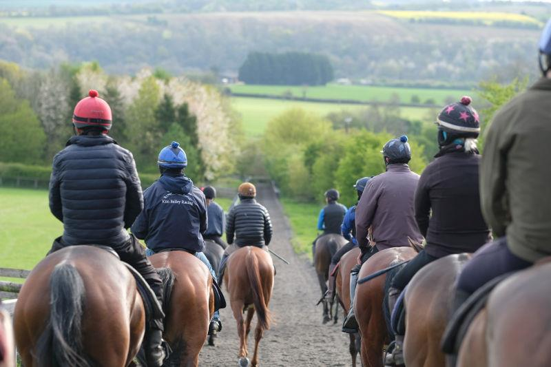 Walking back down the gallops