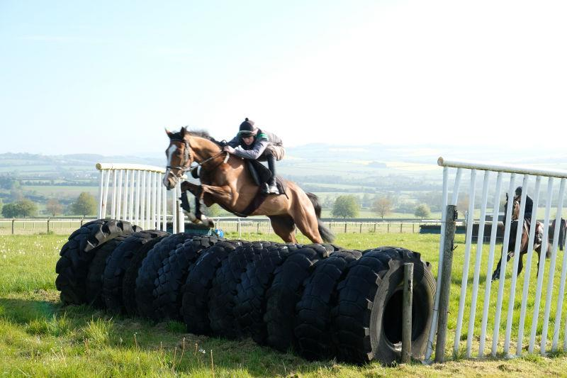 Abbreviate jumping the tractor tyres