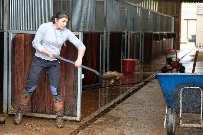 Cleaning out the stables is not the most enjoyable job but it needs doing..
