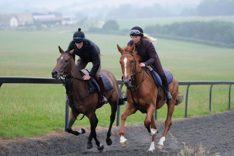 Flying Legend Filly and the Schiaparelli gelding cantering upsides