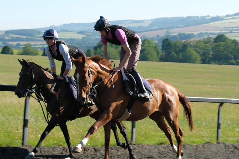 Flying Legend filly and the Schiaparrelli gelding cantering upsides