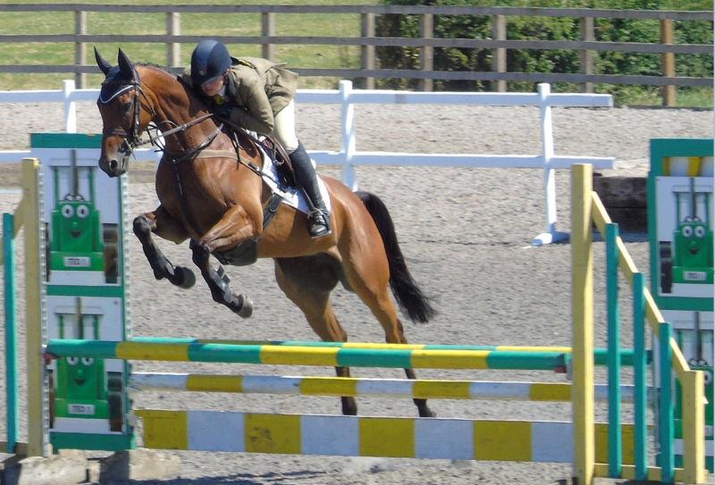 Norman Carter's ex racehorse Rhianna is now eventing