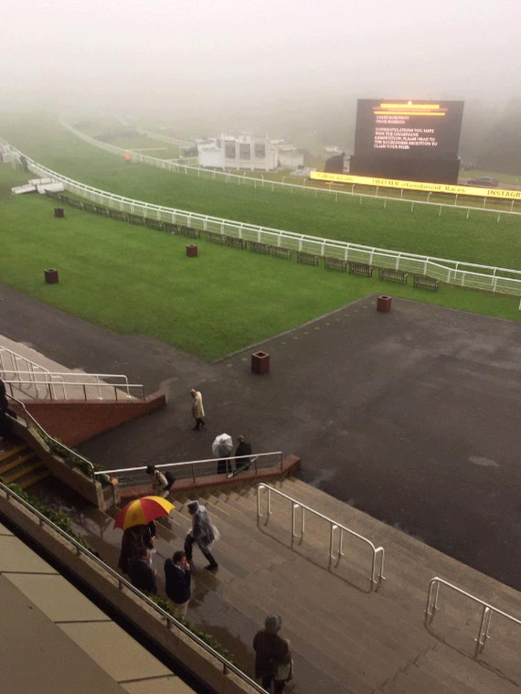 Goodwood yesterday.. Pictures sent by Cornelius Lysaght