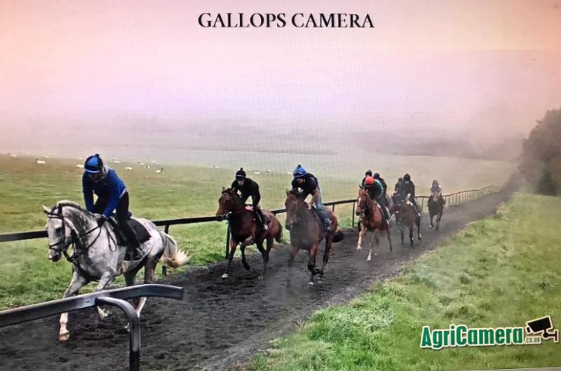 Better later on the gallop camera..