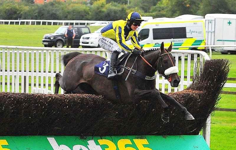 Sonneofpresenting jumping the last at Worcester