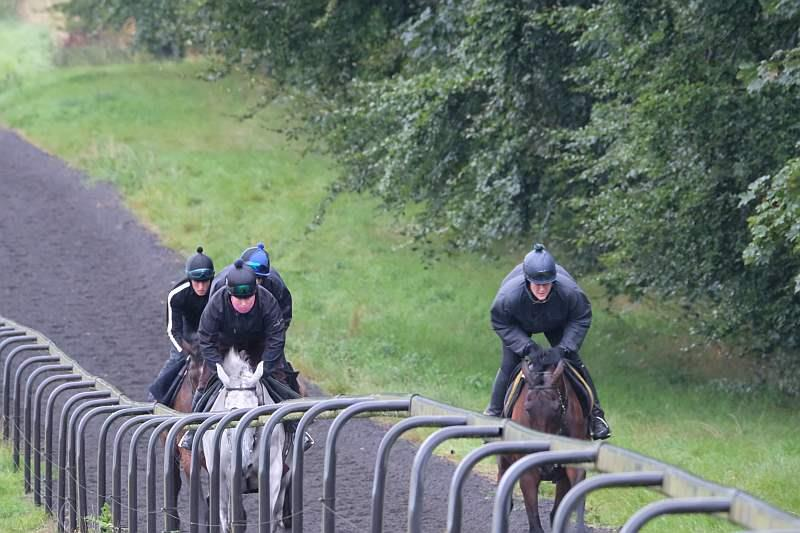 Knockanrawley and Harry Topper leading