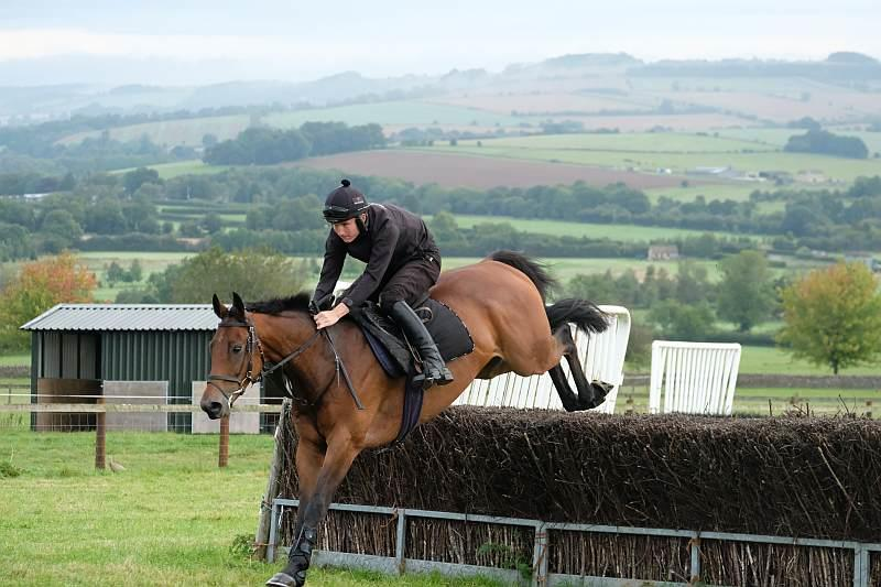 Champion Chase jumping fences