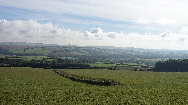 The view south towards Lambourn