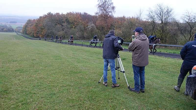 Filming them canter