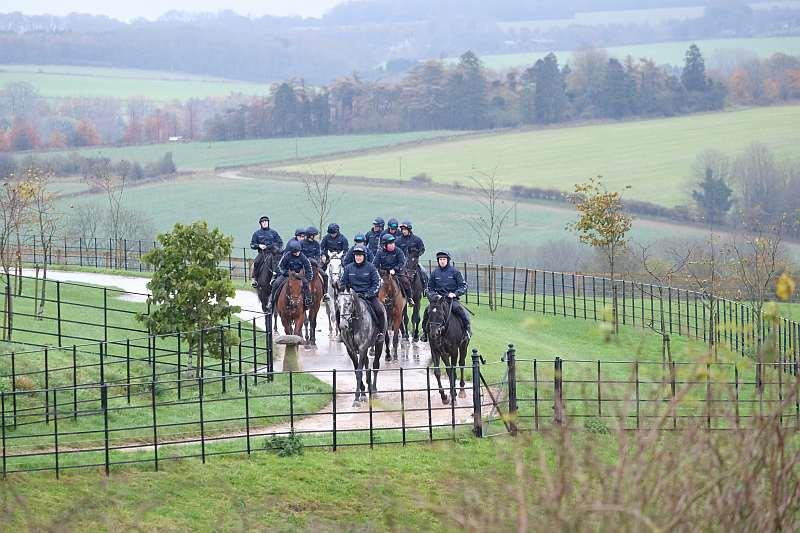 Heading to the gallops