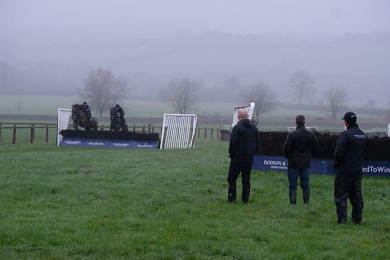 Watching schooling in the rain