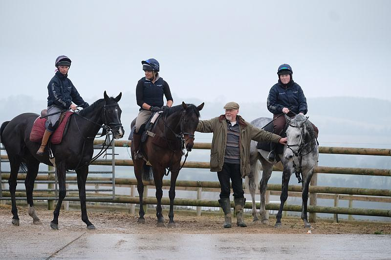 Norman with his horses Milord, Diamond Gait and Sunblazer