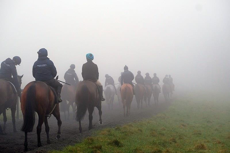 Heading back down the gallops