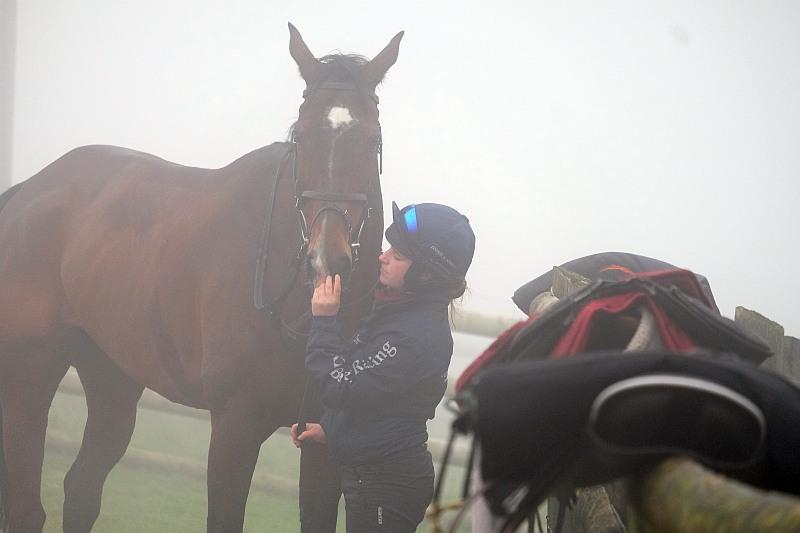 Ellie tickling Trojan Star's nose..