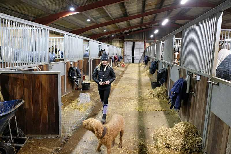 Hive of activity during evening stables last night