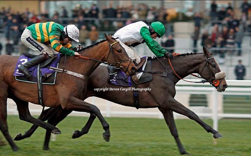 Vinndication gets up on the line to win the last at Ascot on Saturday