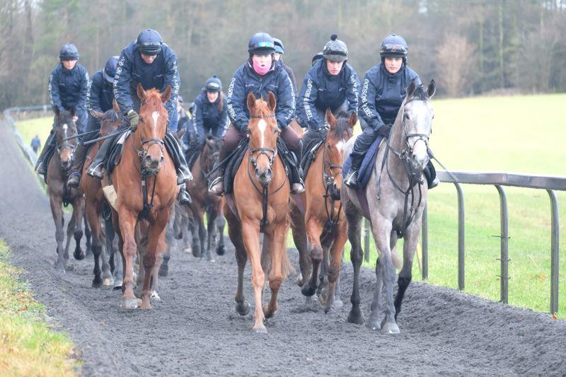 Mr Grey Sky and Pond Road leading the string