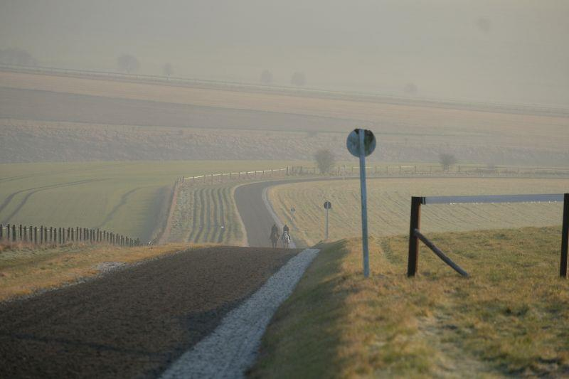 Working up the back of the hill in Lambourn