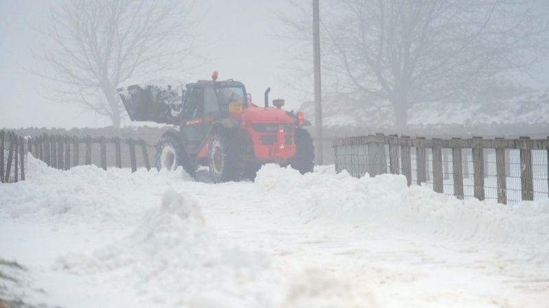 Manitou clearing the drive. Thanks Brian