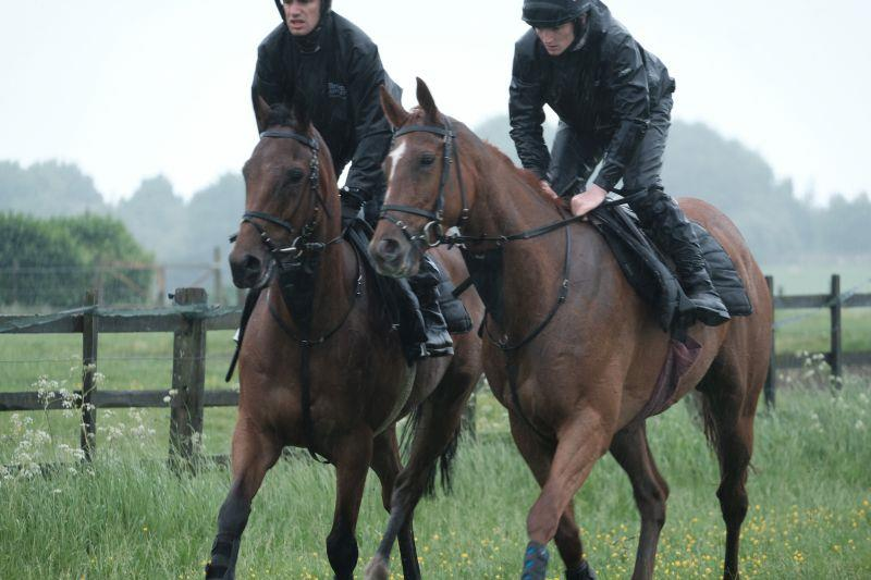 Dandy Dan and Little Chunk head to the schooling ground