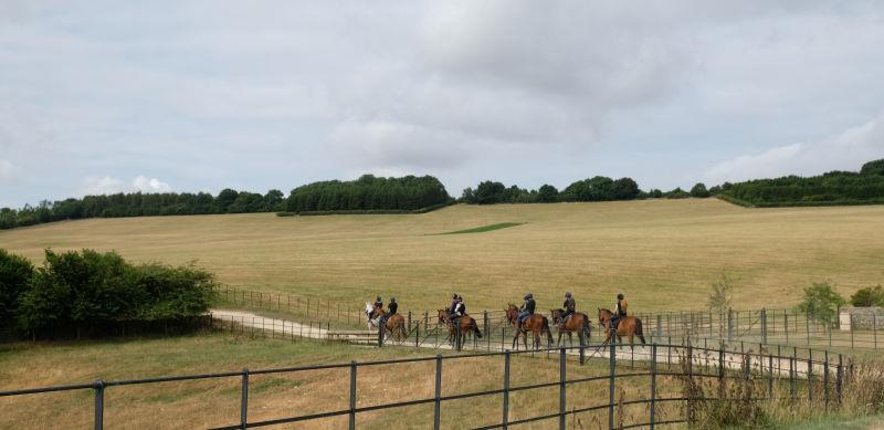 The string heading to the gallops.. parched grass?