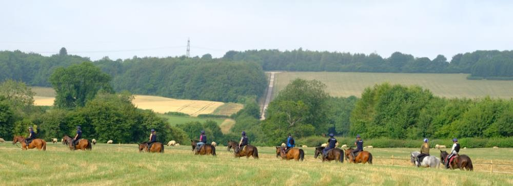 On the round gallop with hill gallop in the background
