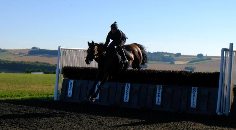 Cresswell Legend jumping fences