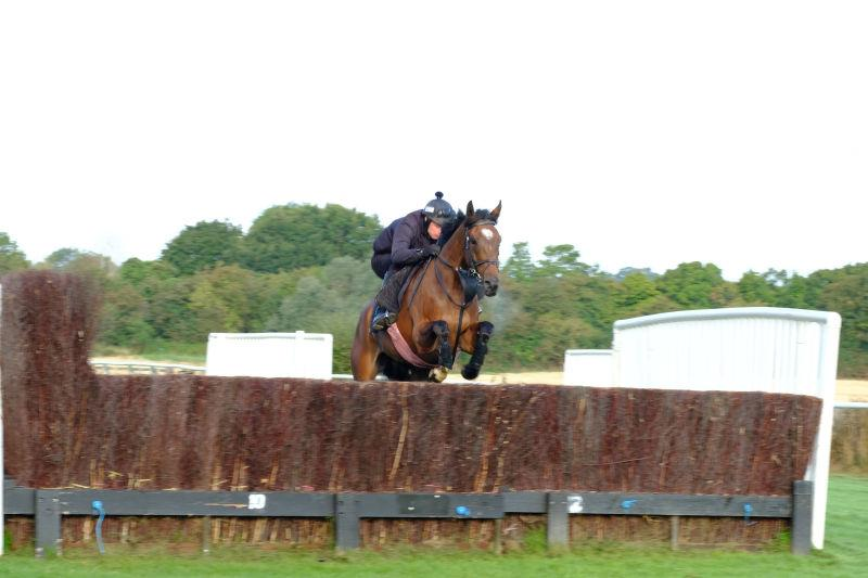 Charbel jumping fences at Warwick this morning