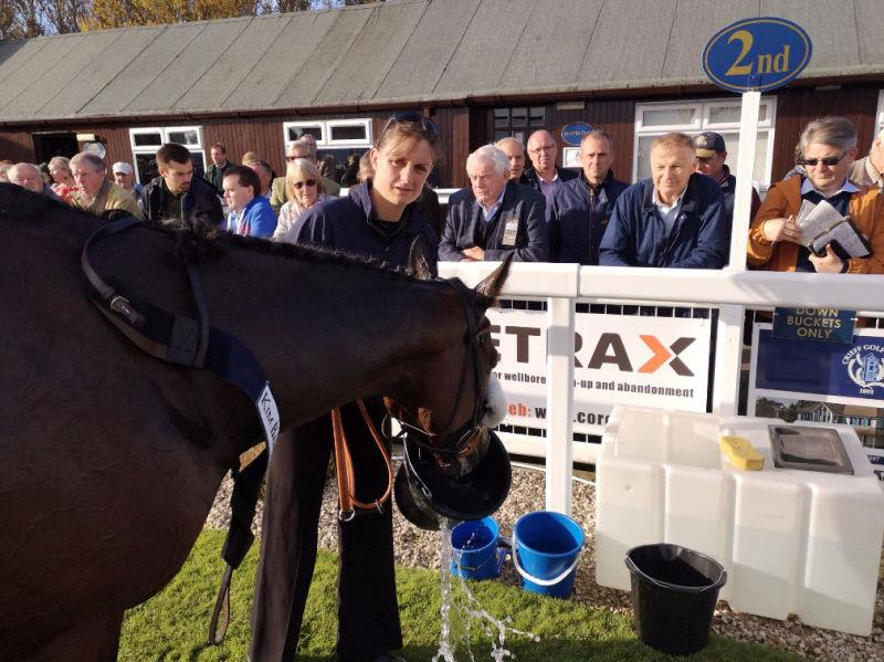 Cresswell Legend having a well earned drink.. trainer likewise soon after.