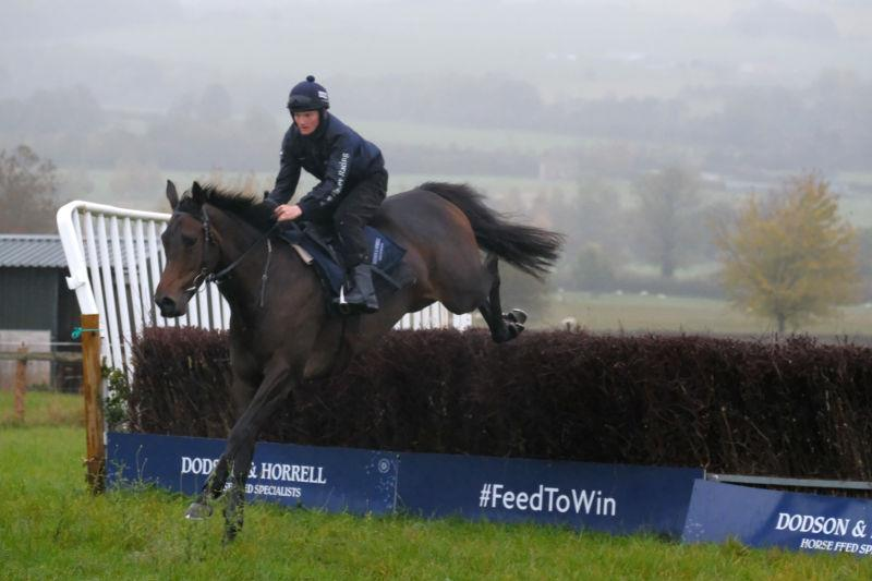 Cloone Lady jumping with Mikey Hamill
