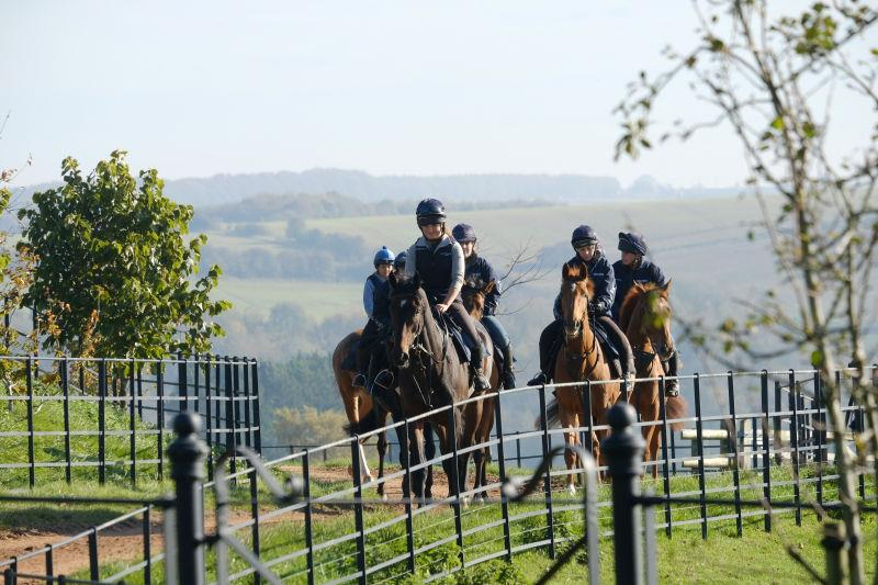 Heading to the gallops 4th lot