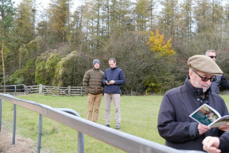 Top mIrish point to point jockeys Mark O'Hare and Jamie Codd watching.. not sure what..