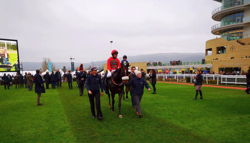 Station Master returning after a good run at Cheltenham yesterday