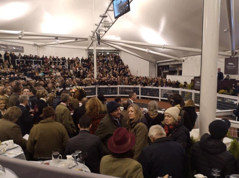 A packed sales ring last night.. far too many onlookers