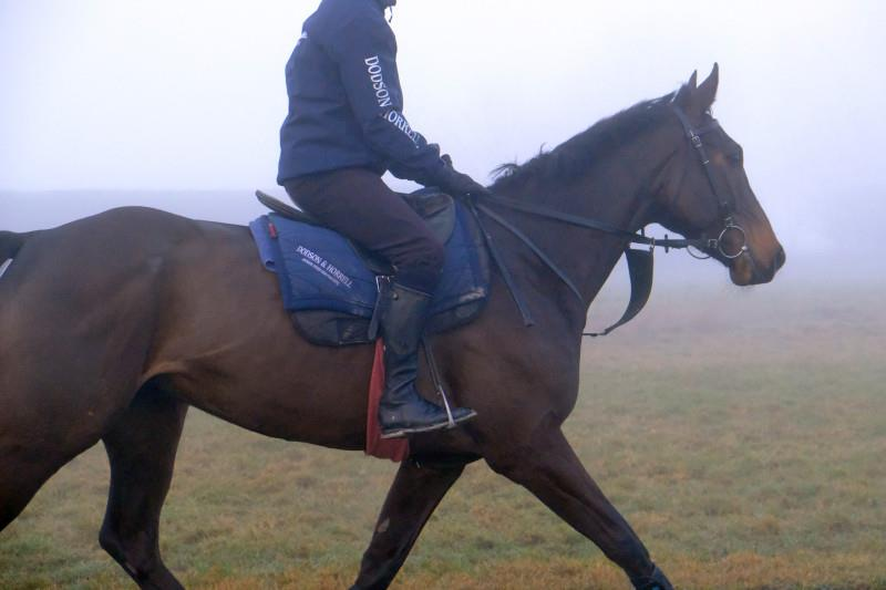 Alfie Corbitt trotting to the gallops in a very foggy Lambourn