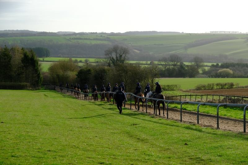 Walking down the gallop after first lot